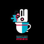 KALM KAOZ  ROCK THE MYSTERYLAND USA ANTHEM 2014