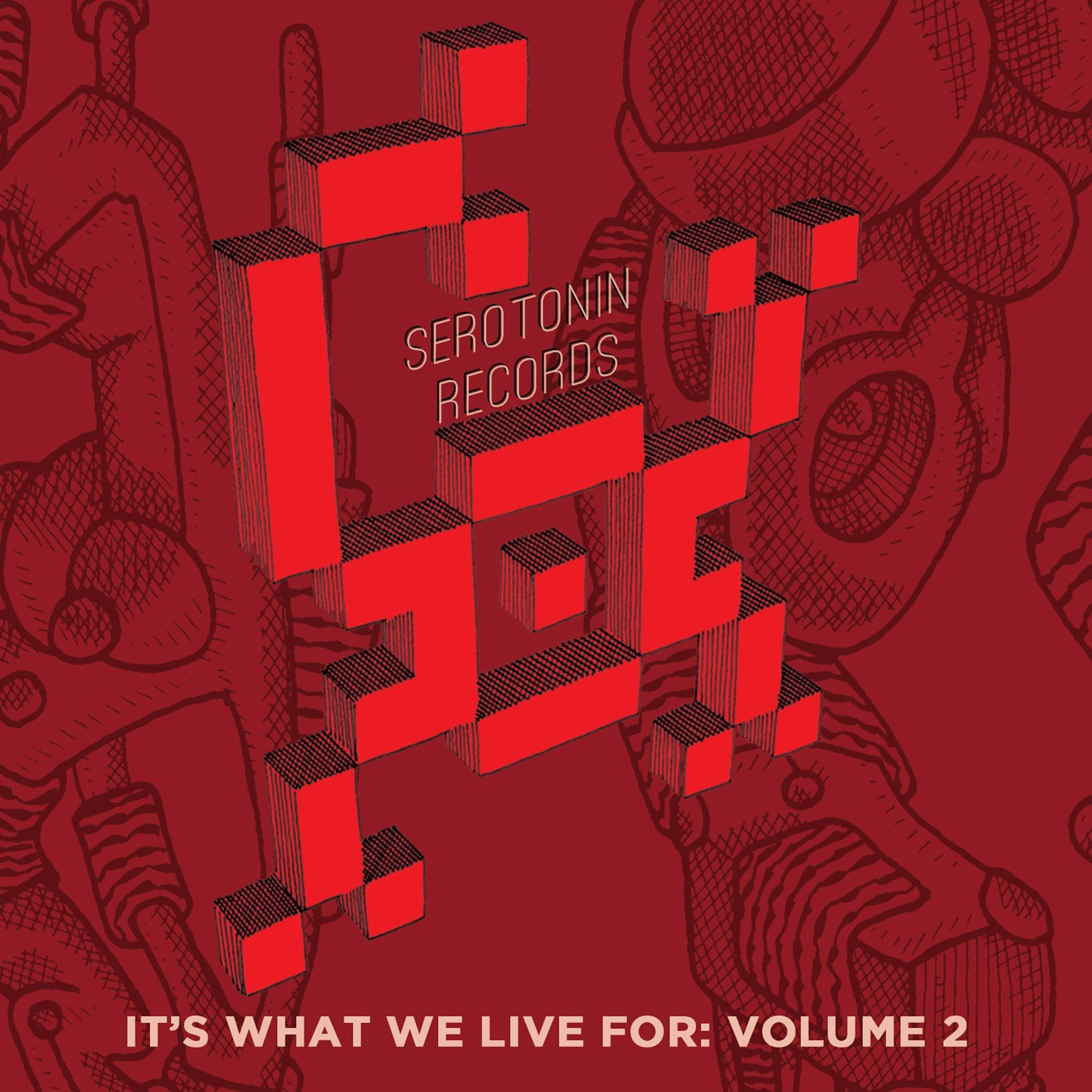 "SERD023 Various – ""Its What We Live For Volume 2"""